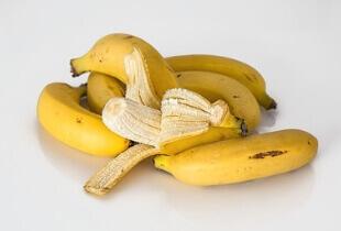 can shih tzu eat bananas, can shih tzu eat banana, bananas for shih tzu